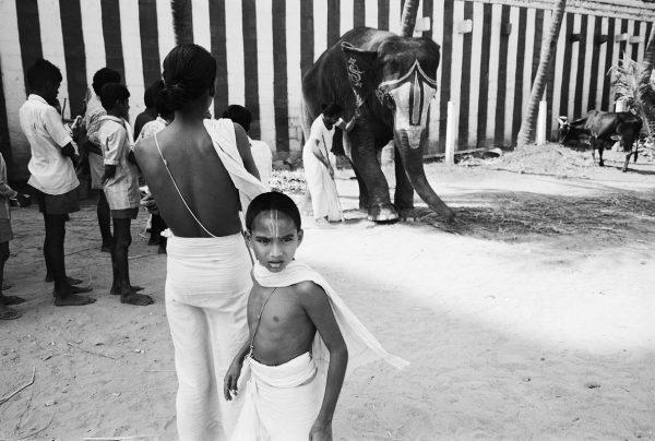 Boy with Elephant Mudurai
