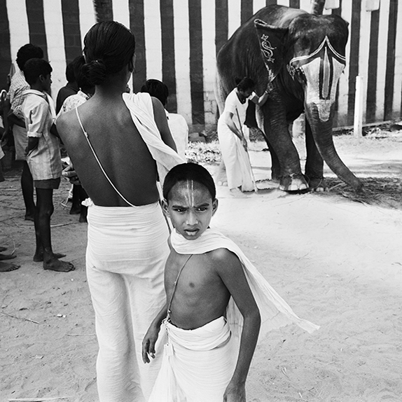 Boy & Elephant Maduri
